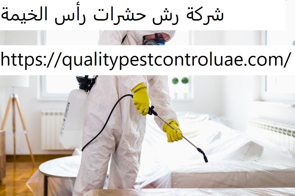 شركة رش حشرات رأس الخيمة