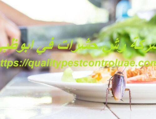 شركة رش حشرات في ابوظبي |0545307678| مكافحة