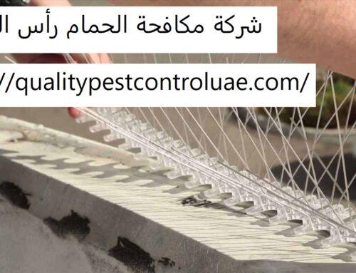 شركة مكافحة الحمام رأس الخيمة |0545307678| ابادة الحمام
