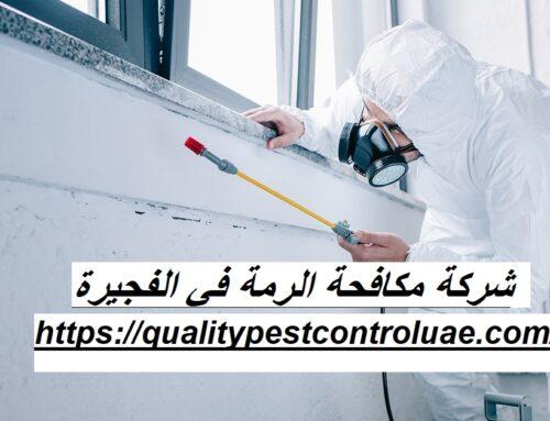 شركة مكافحة الرمة في الفجيرة |0545307678| ابادة حشرات