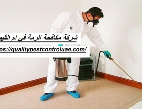 شركة مكافحة الرمة في ام القيوين |0545307678| ابادة النمل
