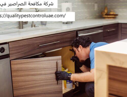 شركة مكافحة الصراصير في دبي |0545307678| ابادة فورية