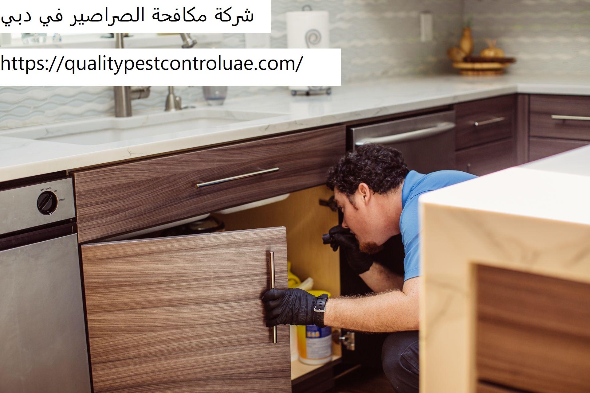 شركة مكافحة الصراصير في دبي