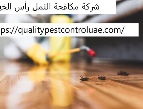 شركة مكافحة النمل رأس الخيمة |0545307678| ابادة النمل