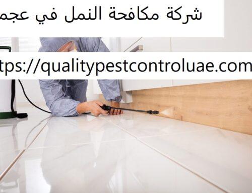 شركة مكافحة النمل في عجمان |0545307678| ابادة النمل