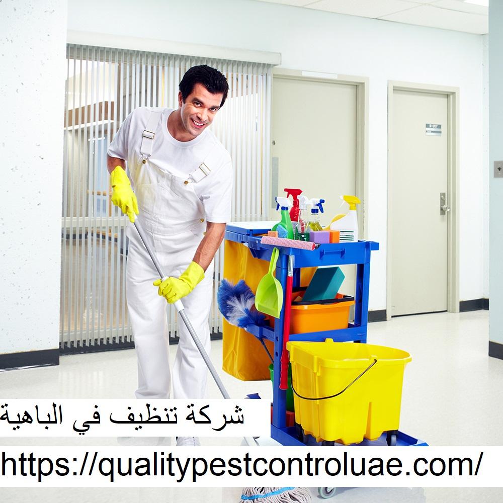 شركة تنظيف في الباهية